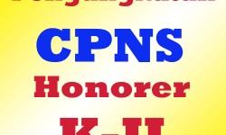Syarat Pendaftaran CPNS Untuk Honorer