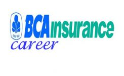 bca insurance career