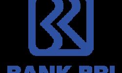 Rekrutmen PT Bank Rakyat Indonesia