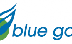 career blue gaz terbaru