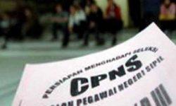 Informasi Pendaftaran CPNS Online MENPAN