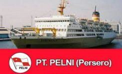 logo-pt-pelni